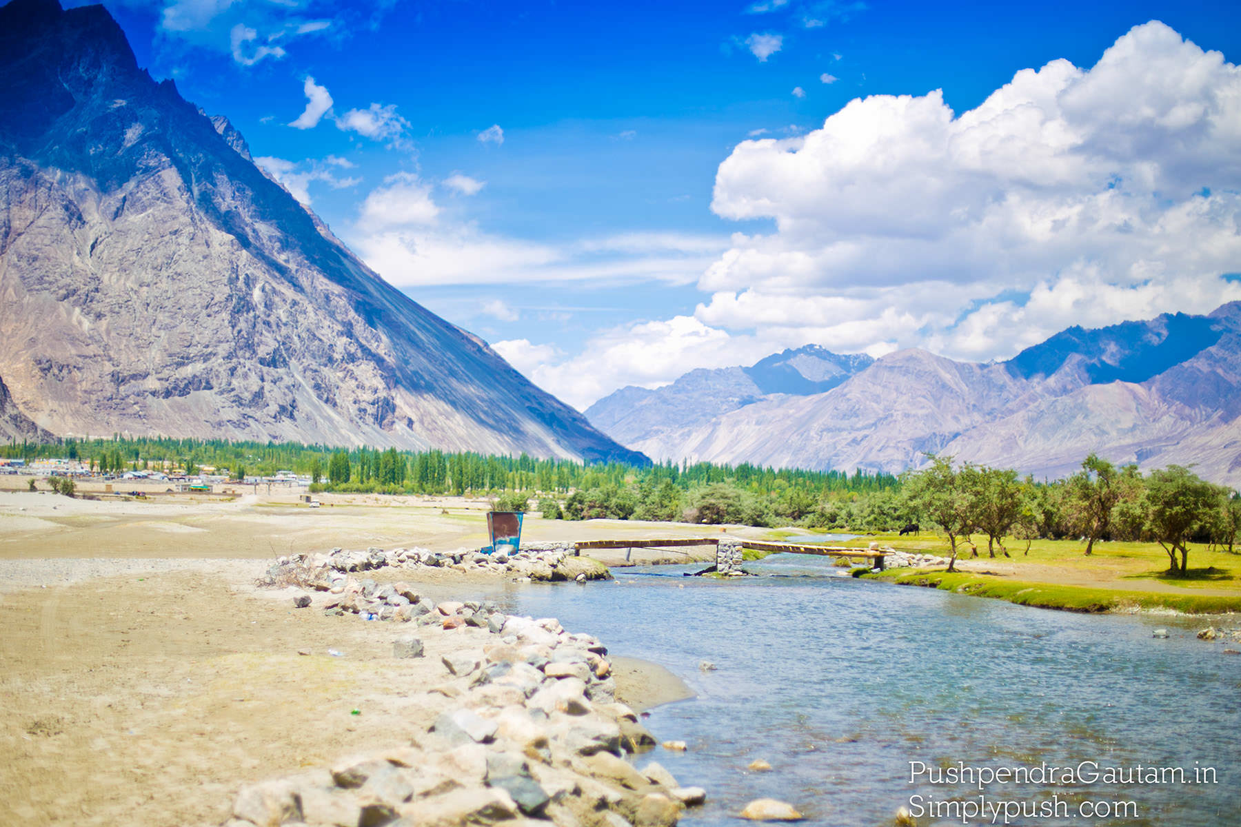 Nubra-Valley-Ladakh-Road-Trip