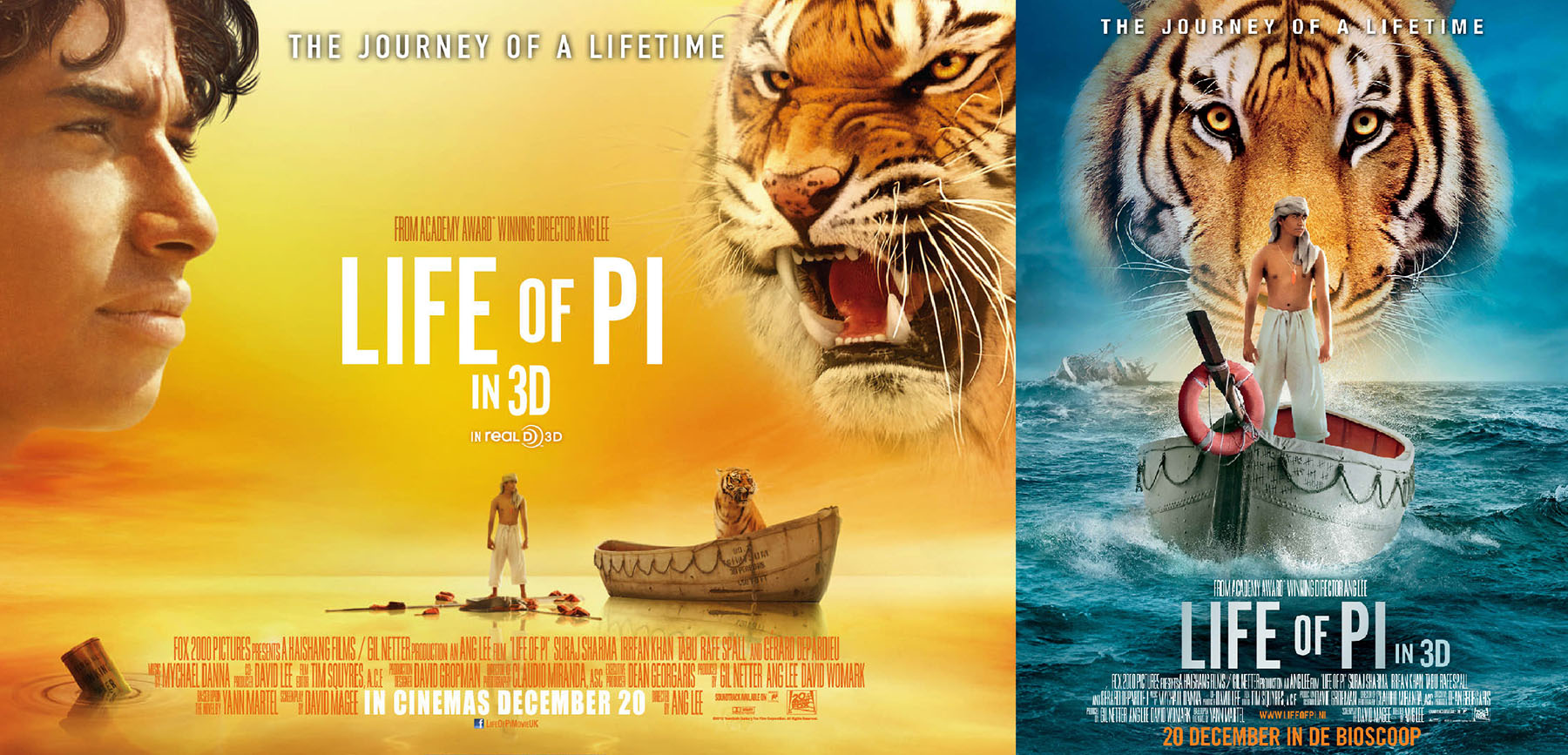 A young man who survives a disaster at sea is hurtled into for Life of pi characterization